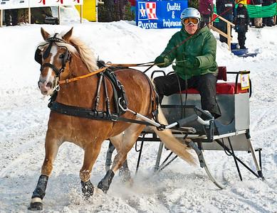 Horse & Sleigh Racing 2