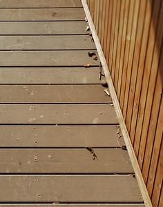 Wood Walkway On Covered Bridge