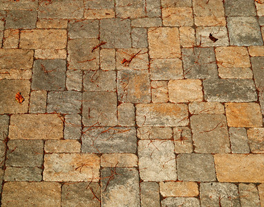 Pavers & Stone Flooring