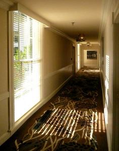 Natural Lit Hallway