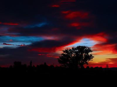 Nighttime Splendor