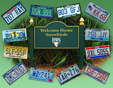 Welcome Home Snowbirds - License Plates