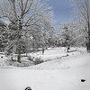 Scottsville Cemetary in snow