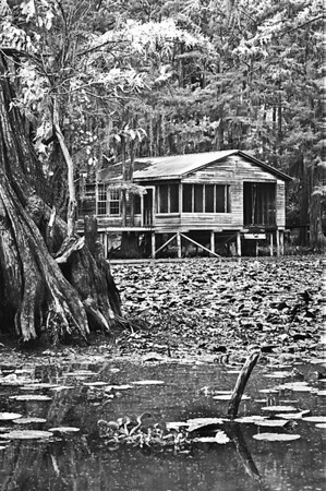 Fishing camp <br /> Caddo Lake<br /> Capturefile: D:\1Ds Raw Image collection\Raw Senic\E80V2818.TIF<br /> CaptureSN: 116000.003694<br /> Software: Capture One PRO for Windows