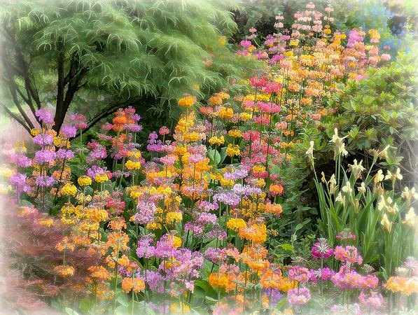 Floral Cascade