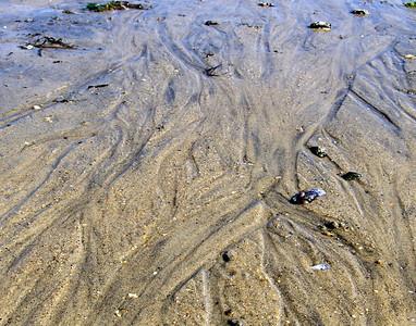 Sea floor #2
