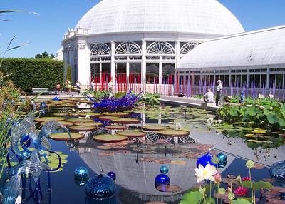 Chihuly @ NY Botanical Garden