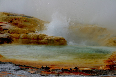 Yellowstone - Mineral Pool