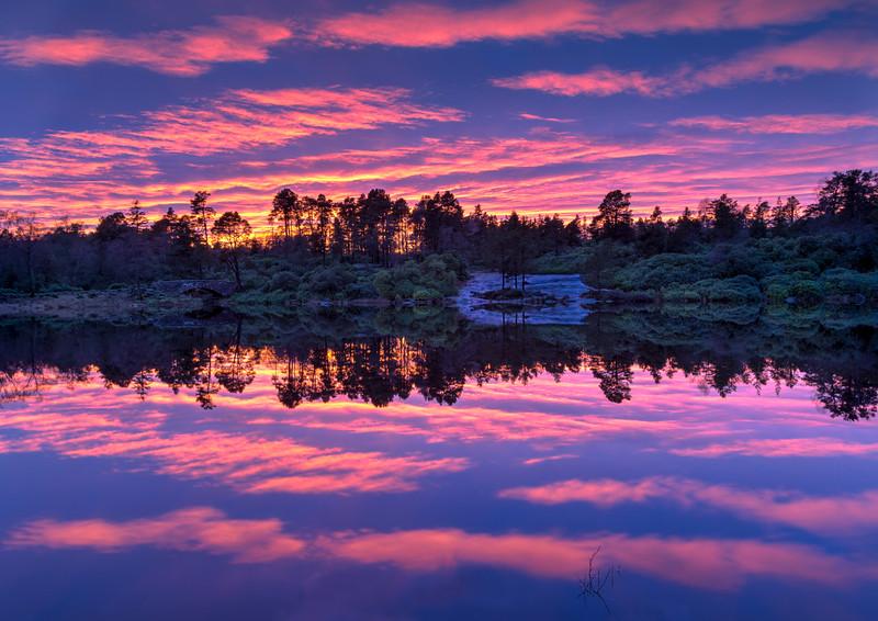 Sunset Over Craigside Lake