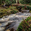 River Coquet, Northumberland