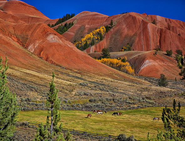 The Red Hills of Kelly<br /> by Wayne Tabor<br /> Landscape<br /> Score 13