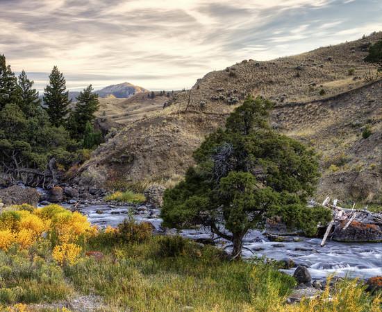Gardiner River Montana