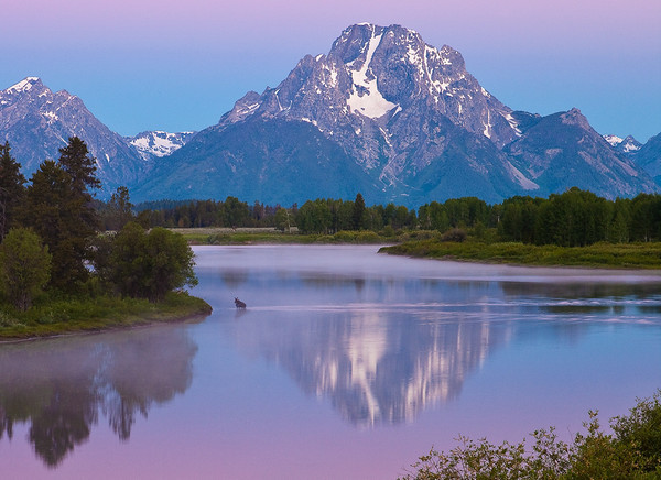Oxbow Bend Moose Crossing<br /> by Wayne Tabor<br /> Open Color<br /> Score 12