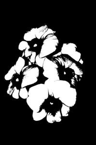 flowers(B&W)