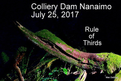 July 25, 2017  Colliery Dam Nanaimo Rule of Thirds