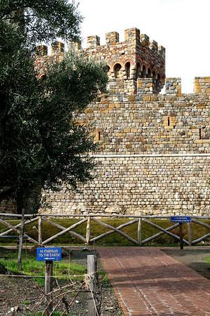 CastelloDiAmorosaJanuary10-2010