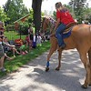 Richard Payerchin - The Morning Journal <br> Haze Showalter, 19 months, is held by his father, Greg Showalter, of Amherst, as they meet Puddles the horse and his owner, Kara Rennert of Berlin Heights, in the Florence Township/Birmingham Memorial Day Parade on May 29, 2017. Hundreds of people across northern Ohio came out to honor Amerca's fallen defenders in community Memorial Day services.