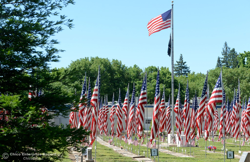 . The Veterans section of the cemetery is adorned with flags during the Memorial Day Ceremony held at the Chico Cemetery in Chico, Calif. Monday, May 28, 2018. (Bill Husa -- Enterprise-Record)