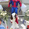 Spider-Man was Matthew's favorite super hero. That dog, Ruby, is almost a twin of Matthew's favorite pet at home.