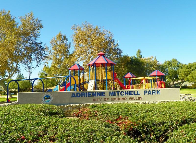 Adrienne Mitchell Park - 1