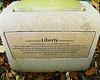 The Liberty Tree plaque