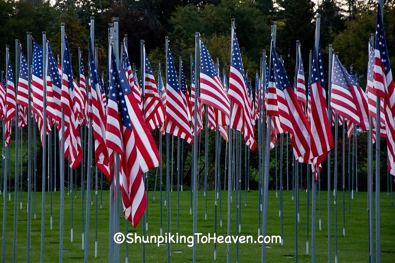 Flags at Veterans Memorial Park, Richland Center, Wisconsin