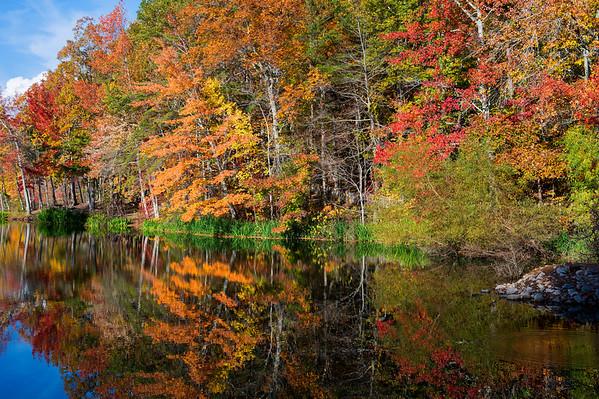 Fall Colors 2017
