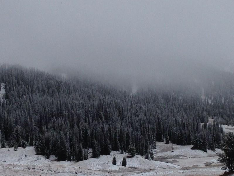 Winter hits Togwotee Pass