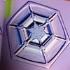 """one of Kenneth Libbrecht's crystals from the little book """"Snowflakes"""""""