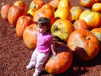 Burt's Pumpkin Farm  10-18-2005