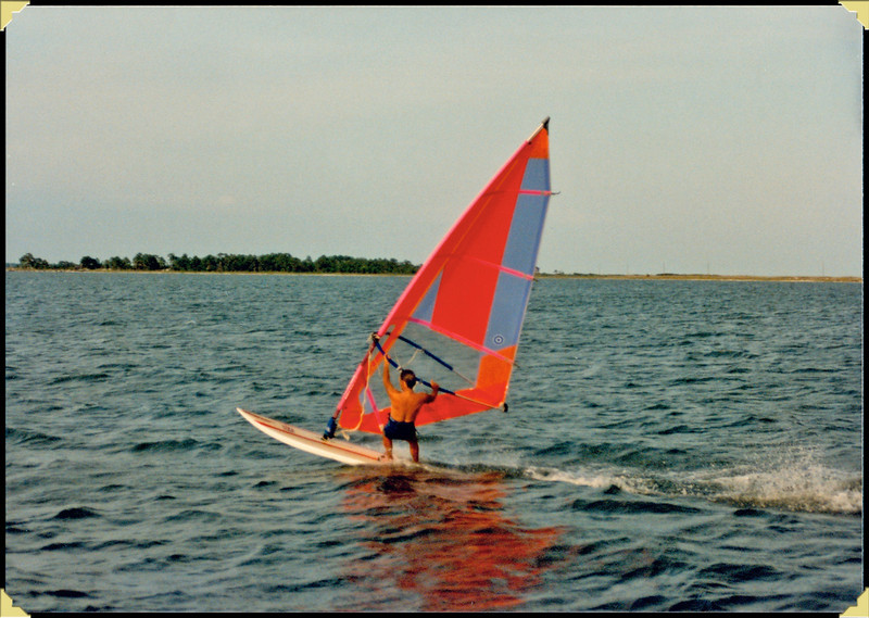 Don Windsurfing Dog Is, Fl
