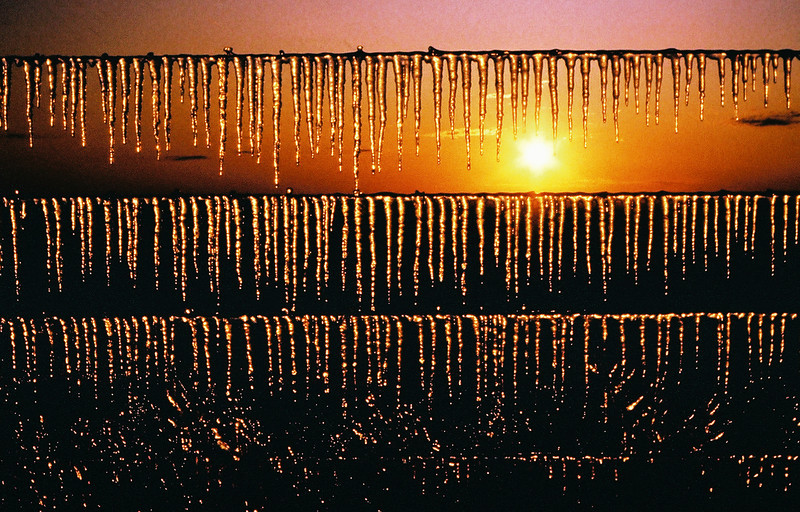 Barbed Ice