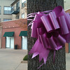 Tie a Pink Ribbon Round the Old Metro Tree