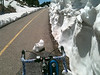 bike path iceberg on Vail Pass