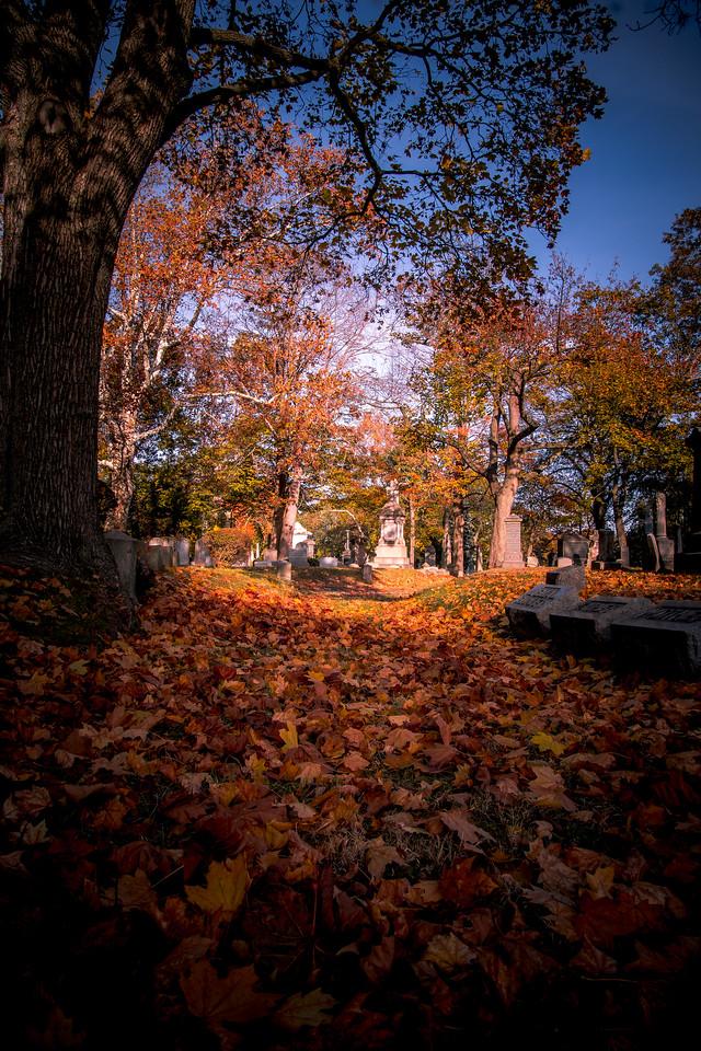 Deep Autumn Path