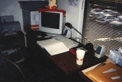 "my awesome computer in 1996, I believe it was a 486DX4-100, and that is a 17"" monitor!"