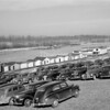 Cars parked on levee. Mississippi River. Memphis, Tennessee, 1942