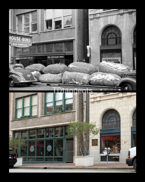 "Cotton ""Snakes"" on Union Avenue 1939/2017"