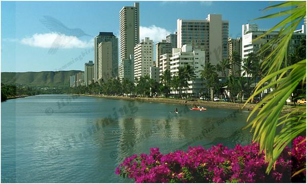 AlaWai Canal, Honolulu, Oahu, Hawai'i