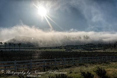 Fog in La Cresta