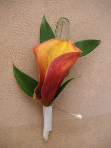Mango calla lily with greens  $15