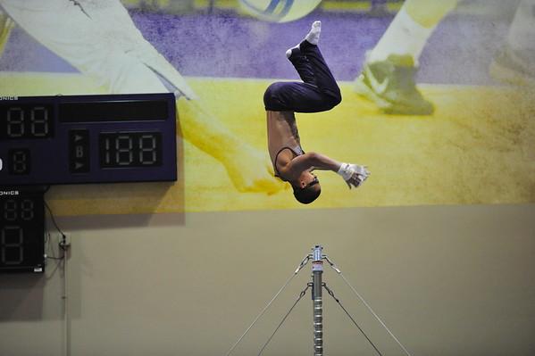 Mens Gymnastics 2016