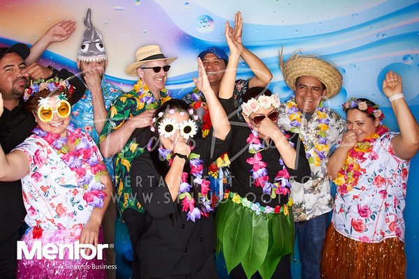Mentor Graphics Hawaiian Picnic 2019