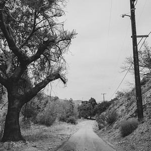 Back Roads #2
