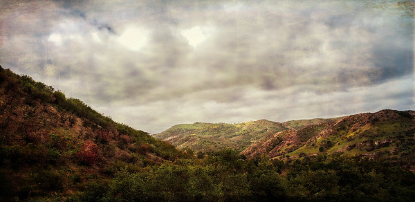 Pancho Canyon Viewpoint