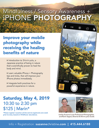 Spring Wildflower Workshop 2019-01