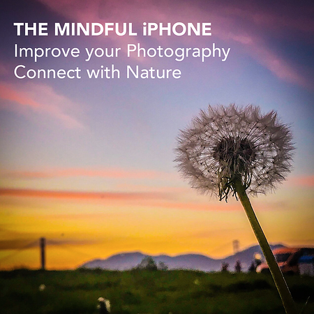 nav_Mindful Photography