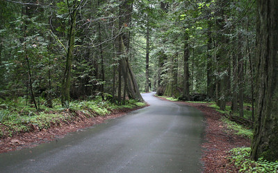 Redwood Hwy, NorCal
