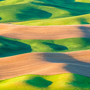 Coaster-Rolling Hills at Steptoe Butte 6
