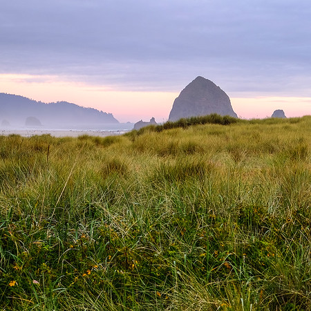 Coaster - Haystack Rock Sunset